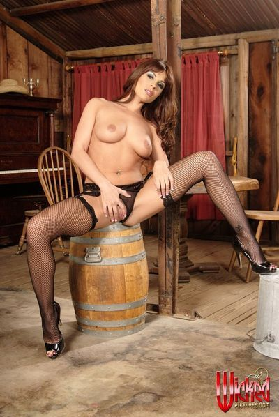 The vicious milf in lingerie and stockings Kirsten Price does the softcore erotic